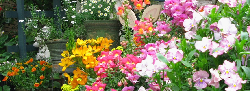 花結び植裁